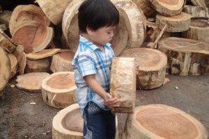 兵庫県産木材と遊ぶ男の子の画像