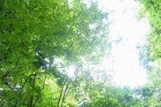 神戸の注文住宅のスタッフブログ
